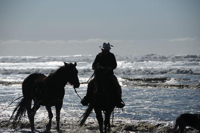 riding-beachDSC_4181